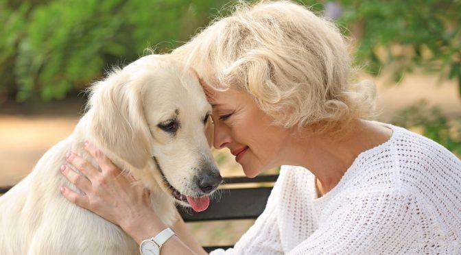 Convivência entre idosos e animais de estimação faz bem para saúde